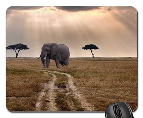 Elefant, der auf einen Bus auf der Savanne wartet Mauspad, Mousepad (Elefanten-Mauspad)