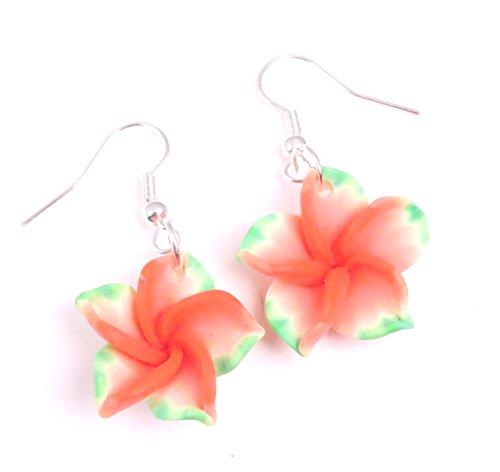 Hawaii Blümchen Ohrringe Blumen Ohrringe Schmuck bunt (Hawaii-ohrringe)