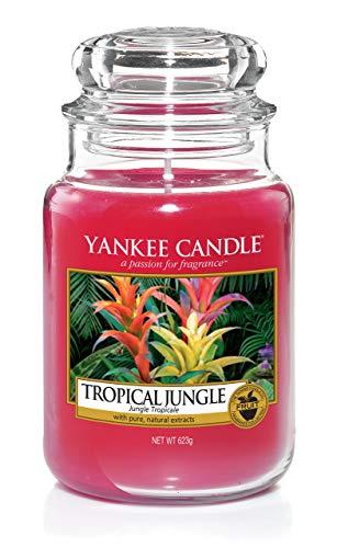 Yankee Candle große Duftkerze im Glas, Tropical Jungle, Brenndauer bis zu 150Stunden