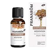 Pranarôm - Les Diffusables - Méditation Bio (Eco) - Mélange pour Diffuseur - 30 ml