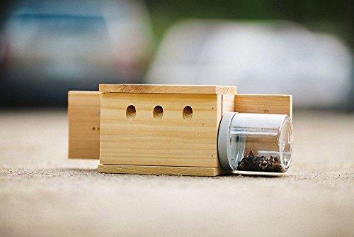back-mount-carpenter-bee-trap