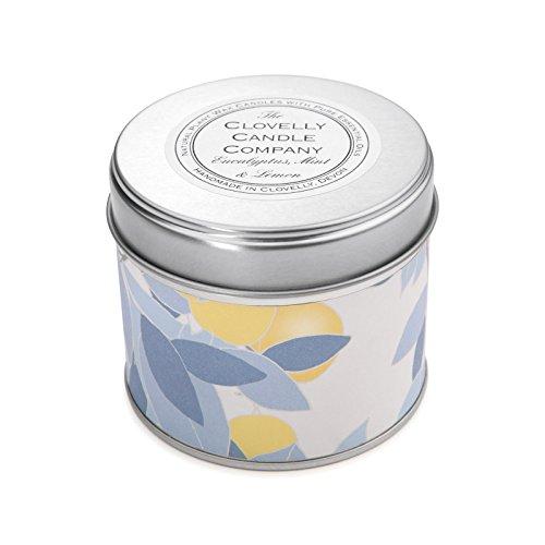 Clovelly Candle Co. Natürliche Handgefertigte Duftende große Dosenkerze Eucalyptus, Minze & Zitrone aus Sojawachs