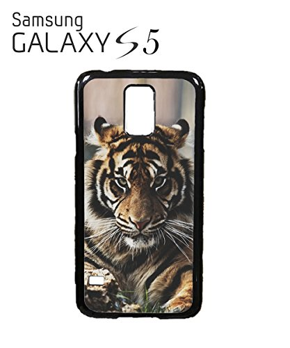 Tiger Panther Lion Angry Face Cool Looking Mobile Phone Case Samsung Note 2 Black Noir