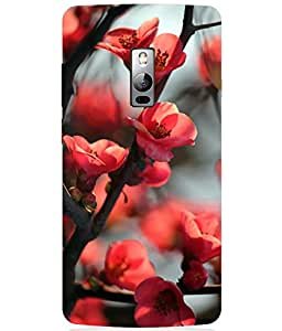 OnePlus 3 Back Cover Case By NEU SPEED