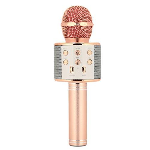 Hanbaili WS-858 Wireless Mikrofon Karaoke mit Lautsprecher Pro, tragbare Bluetooth KTV Karaoke für iPhone iPad Android Smartphone PC, Kinder Geschenk (Rose Gold) (Rauschunterdrückung Spray)