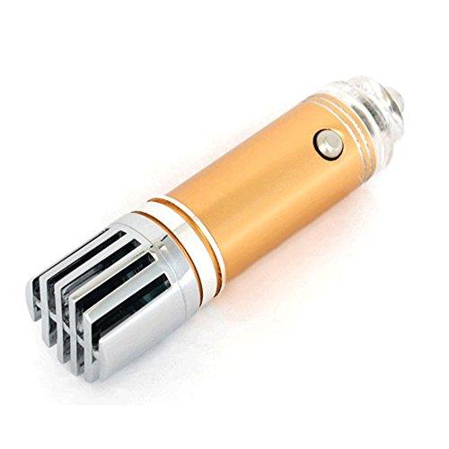Ionisator Luftreiniger für Auto und zu Hause VROOMIO. Beseitigt wirksam Gerüche, Rauch, Bakterien, Pollen und Schmutzpartikel (Gold)