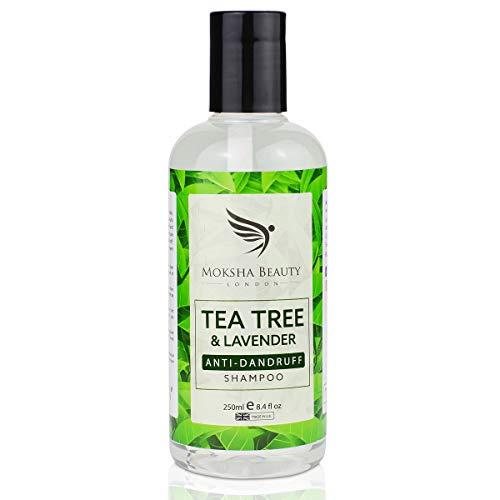 Anti Schuppen Shampoo gegen trockene juckende Kopfhaut für Herren | Frauen mit Teebaumöl - [Made in UK] Anti-Bakteriell | Beugt Kopfläuse vor | 250ml