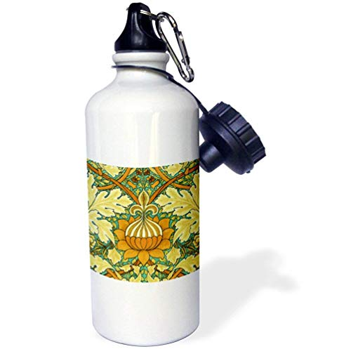 qidushop Sport-Wasserflasche aus Edelstahl, isolierend, 535 ml, von William Morris St. James Chintz (James St Halloween)