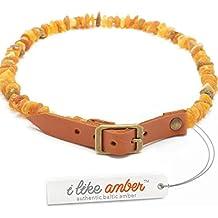 Ámbar Tick & Flea Collar para perros y gatos–Tamaño 20cm–76cm–Top Calidad en Amazon–fabricado en 100% auténtica Raw ámbar báltico–Flea & Protección Tick–100% Natural y libre de productos químicos