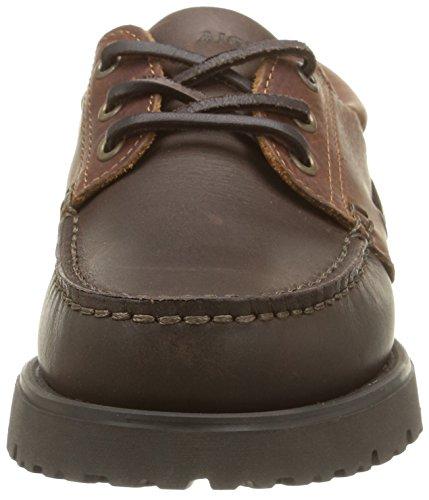 Sapatos Asfalto 432166 Homens Baixos Camelo Aigle Castanha p8aIxAwwq