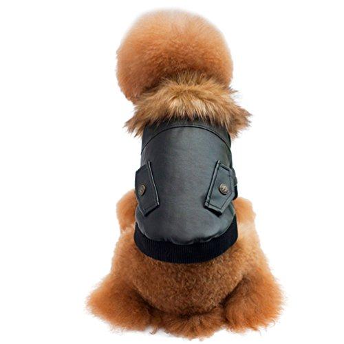 ng mit Kragen aus Kunstpelz Kunstleder Kleider Winter Outfit für Welpen Katze (Schwarz, 36*23*26 CM) (Eisbär Kostüm Für Hund)