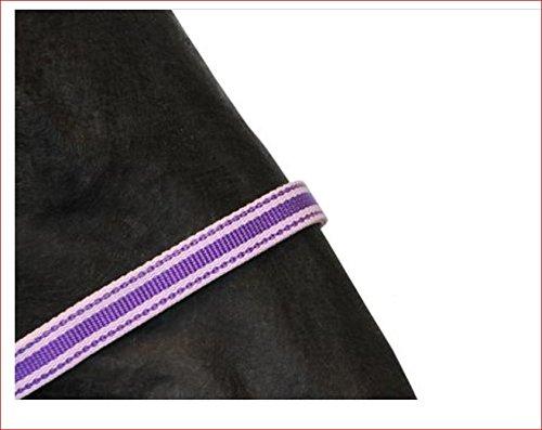 Halfter Gallant Lila Mini Foal Top Qualität Nylonhalfter mit rostfreien Beschlägen! -