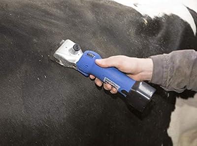 Kerbl 18188FarmClipper, 2batteries, horse clipper–31/15Z from Kerbl