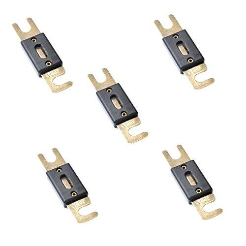 WINOMO ANL Sicherung 300 Ampere vergoldet 5pcs 300 Amp-controller