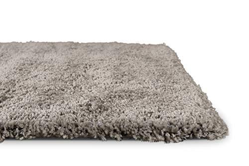 Homie Living Moderner glänzender Hochflor (160 x 230 cm, Grau Taupe) Shaggy Teppich Uni Einfarbig Ancona