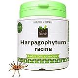 Harpagophytum racine120 gélules gélatine végétale