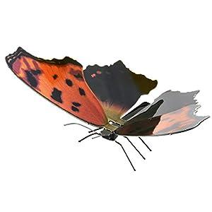 Fascinaciones: Mariposa Oriental De La Coma - Kit del Modelo del Metal 3D