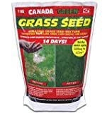 Canada Green Grass Seed 2KG. Coverage up to 94 Sq Metres / 1000 Sq Ft