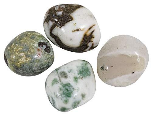 HARMONIZE Árbol de Piedra ágata Tumbled tamaño clasificado Reiki Naturel Piedras- 4 Piezas