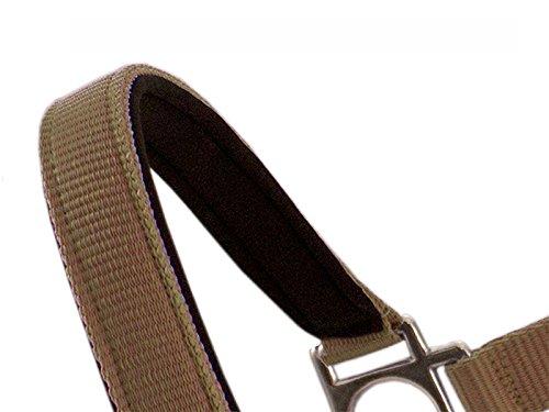 Pferde-Halfter Zaumzeug einseitig Verstellbar aus Nylon mit Karabinerhaken - Neopren Unterlegung - Pferde-Trense (Braun, Cob / Vollblut)