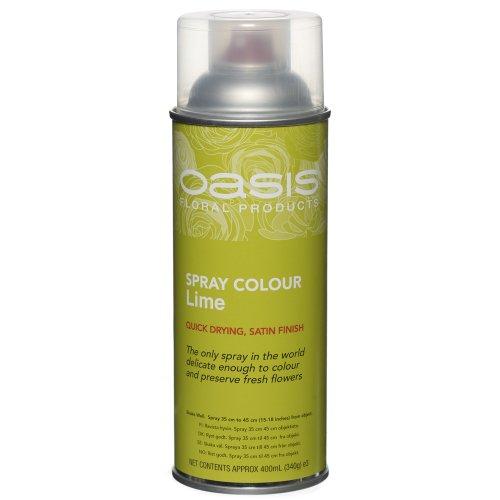 floral-spray-paint-colour-400ml-aerosol-can-lime-green