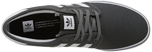 Adidas Performance Seeley Skate Shoe, frêne gris / blanc / noir, 4 M Us Ash Grey/White/Black