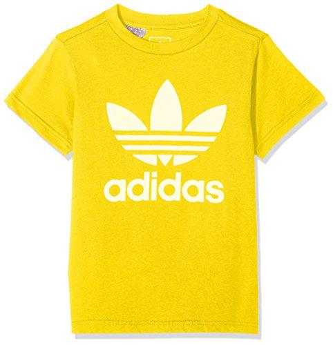 Adidas j trf, t-shirt bambino, giallo/bianco, 11/12