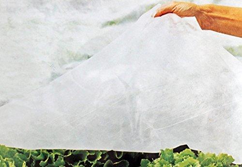 Lizard Plantes Bâche Hiver Non-tissés Frost Protection d'hiver pour Plantes en Pots Betterave 1,6 x 5 m