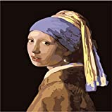 Figur Malerei DIY Malen Nach Zahlen Kits Handgemalte Digitale Farbgebung Auf Leinwand Mädchen Tragen Perle Ohrringe Für Kunst Haben Rahmen 40X50cm