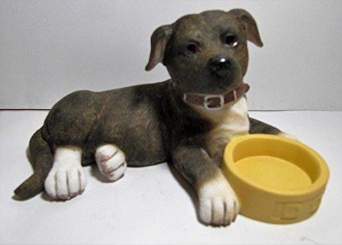 Leonardo Hunde–Staffordshire Bull Terrier liegend mit Schüssel–braun (Hund-schüssel Terrier)