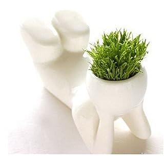 Amazing-Trading Männliche Mini-Figur mit Bonsai-Gras-Haaren - leicht - Liegend