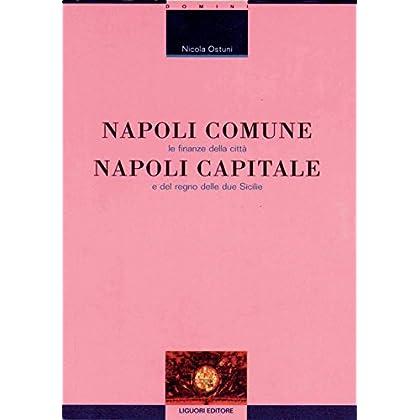 Napoli Comune, Napoli Capitale: Le Finanze Della Città E Del Regno Delle Due Sicilie (Scienze Storiche Vol. 8)
