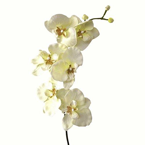 Kunstblume Orchideenzweig 78cm. Farbe weiß CREME