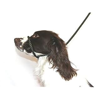 Dog & Field Figure 8 Anti-Pull Lead/Halter /Head Collar/Harness (Olive Green)