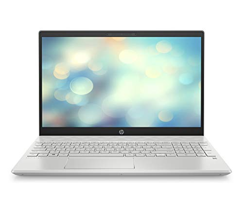 HP Pavilion 15-cs2008ng (15,6 Zoll / Full HD IPS) Laptop (Intel Core i7-8565U, 16 GB DDR4, 512 GB SSD, Nvidia GeForce MX250 2 GB DDR5, Windows 10 Home) silber
