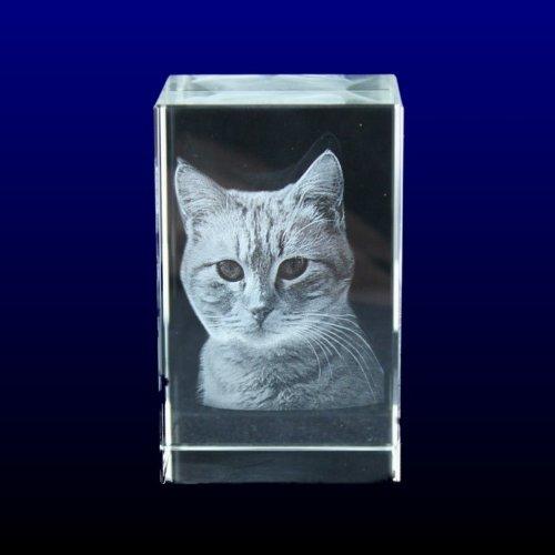 vip-laser-bloc-de-cristal-grave-en-3d-taille-l-avec-la-photo-de-votre-chat