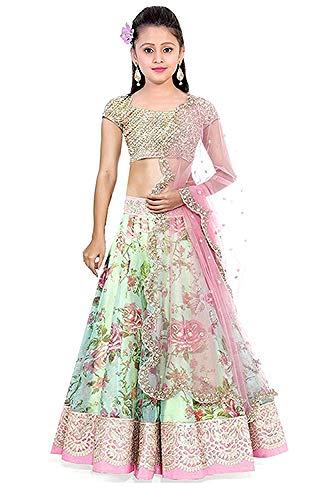 Nilkanth Fashion Girl\'s Bhagalpuri Printed Lengha Choli (NF_KLC_002_Green_8-12 year)