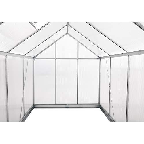 Zelsius Aluminium Gartengewächshaus - 7