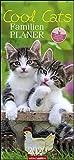Cool Cats Familienplaner 2020 22x48cm