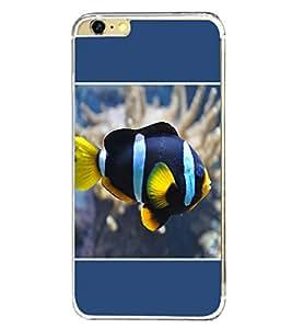 PrintVisa Colourful Fish High Gloss Designer Back Case Cover for Apple iPhone 6