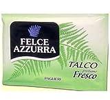 48enveloppes Talc Parfum frais fougère bleue enveloppe de voyage poudre fraîche
