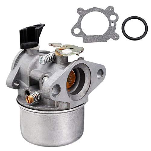TOOGOO Vergaser Passend für Briggs & Stratton 498170 497586 497314 698444 498254 497347 Modelle mit Dichtung und O Ring, 4-7 Ps Motoren Ohne Choke (799868)