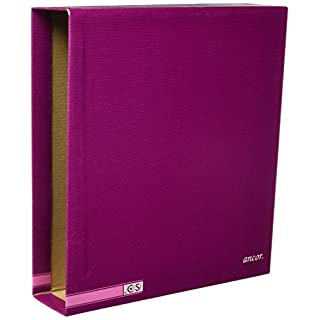 Ancor 949600 - Purple arch folder box, 325x287x80mm