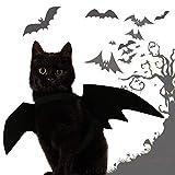 Minions Boutique - Ropa para Gatos, Cachorros, Perros, Divertido, Disfraz para Gatos, Gatitos, Halloween, Fiestas, Mascotas