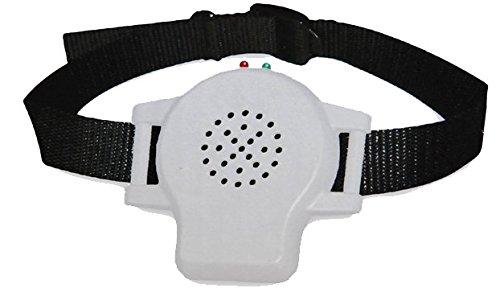 PestBye Anti-Bell-Halsband mit Sprachsteuerung