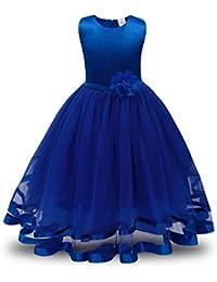 Vestidos para niñas, Dragon868 Flor Girls princesa boda fiesta dama de honor tutú de tul
