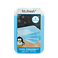 Fit & Fresh XL Cool Coolers Reusable Ice Packs, Long Lasting Ice Packs for Lunch Boxes, Lunch Bags and Coolers, Set of 4, Blue