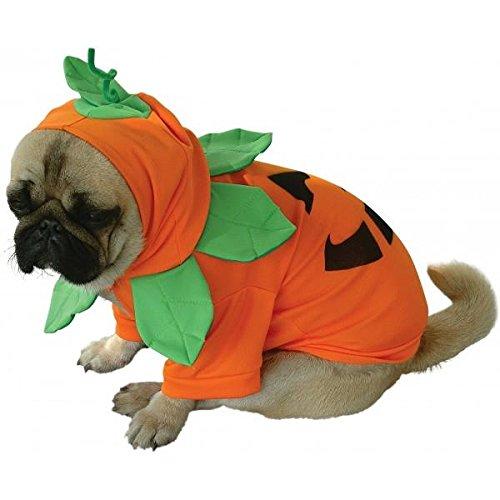 Kostüm Hund Kürbis Halloween M (Hund Kürbis Kostüm)