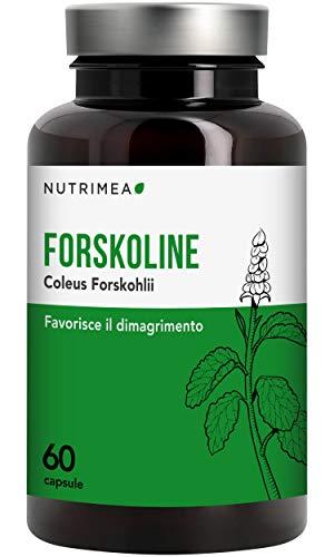 500 mg di PURO PURO COLEUS FORSKOHLII - ACCELERA IL METABOLISMO in una sola mossa! Risveglia il METABOLISMO LENTO e IMPEDISCE IL DEPOSITO DI GRASSI - Registrato MINISTERO DELLA SALUTE ITALIANO