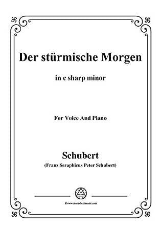 schubert-der stürmische morgen,from 'winterreise',op.89(d.911) no.18,in c  sharp minor,for voice&piano (french edition) ebook : franz seraphicus  peter, schubert: amazon.de: kindle-shop  amazon